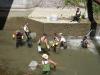 Pêche électrique sauvetage Canal du Thiers juillet 2013